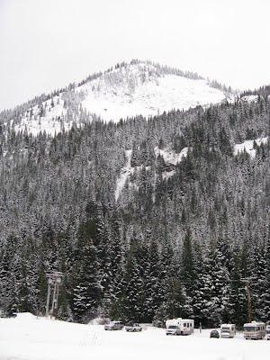 Snow in Rainier national park