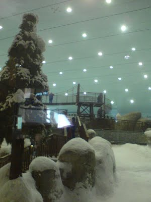 christmas_tree_mall_of_Emirates