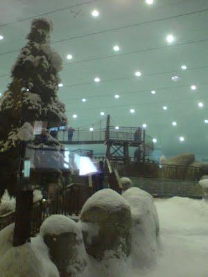 christmas_tree_mall_of_Emirates