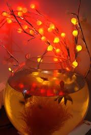 Fish Bowl - Lit Up