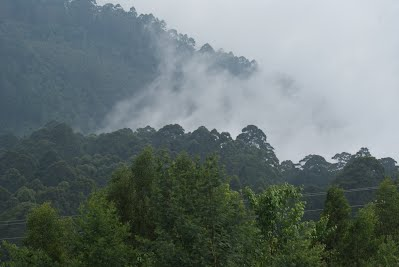 View from Coakers Walk, Kodaikanal