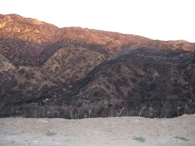 Pictures of dry and barren Rocky Mountains near LA - after a forest fire.