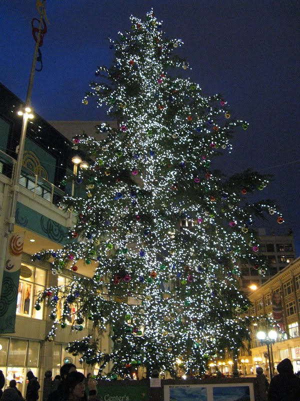 Christmas Tree near the Westlake Center - Seattle