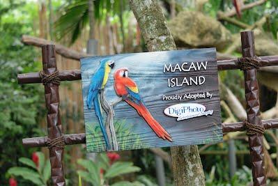 Jurong Bird Park, Singapore - Macaw Island