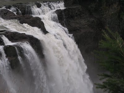 Snoqualmie Waterfalls - 6