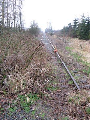 Railway Track in Redmond  ( along the Burke Gilman Trail )