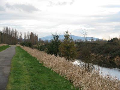 The Burke - Gilam trail